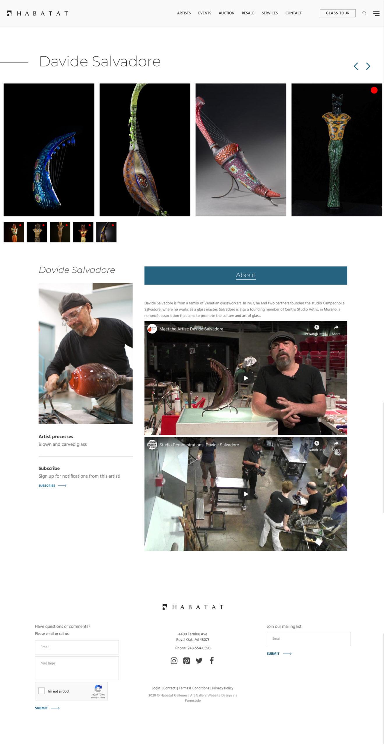 Art Gallery Artist Bio Page