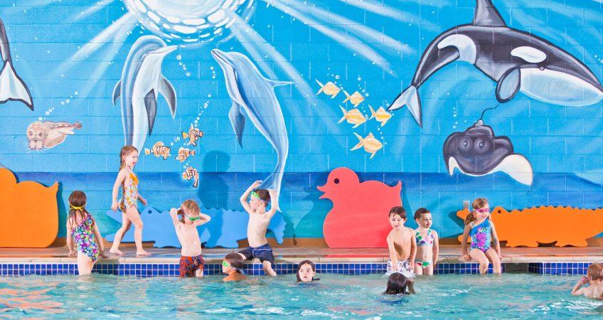 New Goldfish Swim School Website Makes a Splash! 3